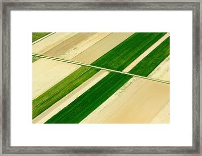Fields In Spring 5 Framed Print by Davorin Mance