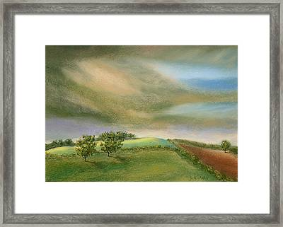 Fields In The Sun Framed Print