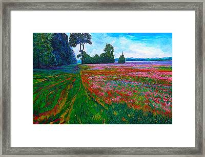 fields of color framed print by linda j bean - Fields Of Color