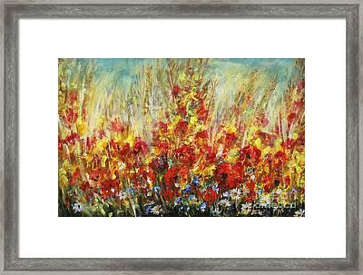 Fields Of Dreams II Framed Print