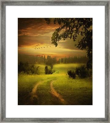 Fields Of Dreams Framed Print by Georgiana Romanovna