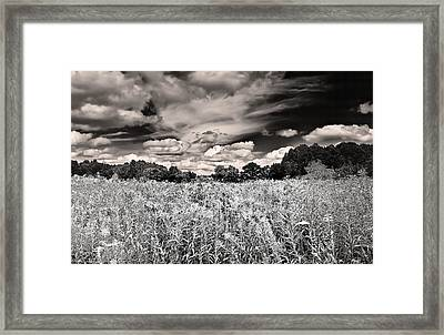 Framed Print featuring the photograph Fields Of Gold And Clouds by Mitchell R Grosky
