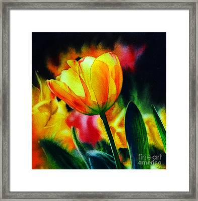Fields Of Gold Framed Print by Arena Shawn