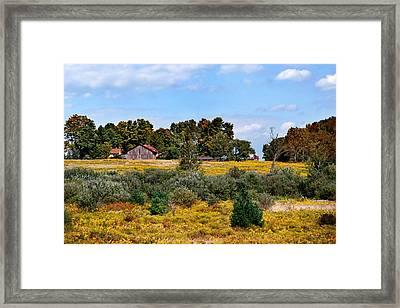 Fields Of Gold Landscape Framed Print