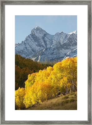 Fiery Aspen Landscape Framed Print by Aaron Spong