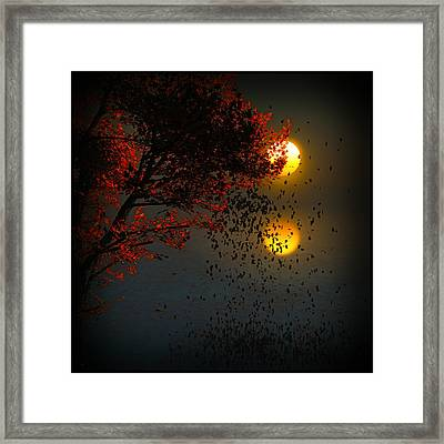 Fiery Fall... Framed Print