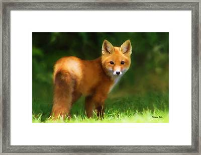 Fiery Fox Framed Print by Christina Rollo