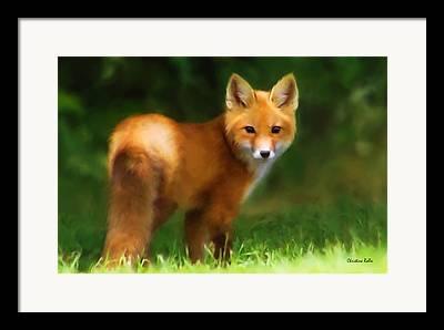 Fox Kit Mixed Media Framed Prints