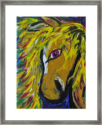 Fiery Steed Framed Print by JAMART Photography
