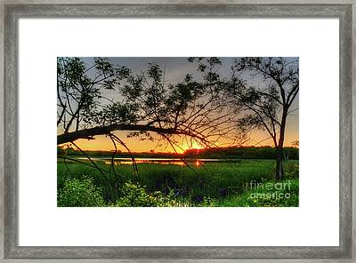 Fiery Swamp Sunset Framed Print by Deborah Smolinske