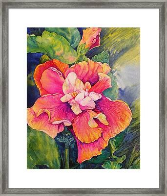 Fiesta Petals Framed Print