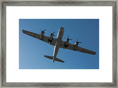 Fifi Overhead Framed Print by John Daly