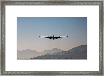 Fifi Rising Framed Print by John Daly