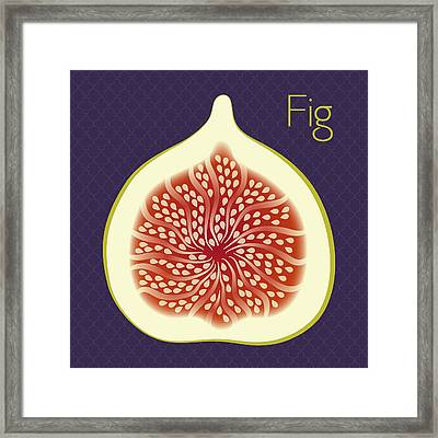 Fig Framed Print by Christy Beckwith