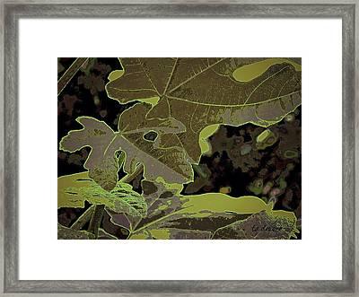 Fig Leaf Fall Framed Print