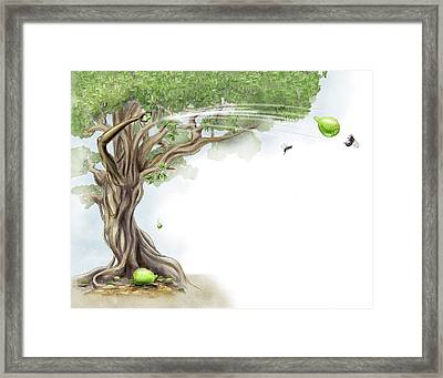 Fig Tree And Wasp Framed Print