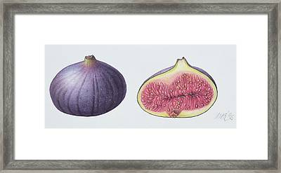 Figs Framed Print by Margaret Ann Eden