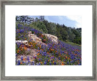 Figueroa Mountain Splendor Framed Print by Kurt Van Wagner