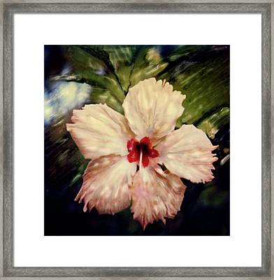 Fiji Magic Framed Print