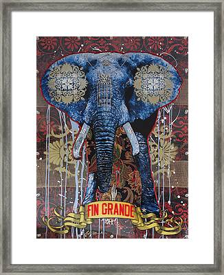 Fin Grande Framed Print by Gary Kroman