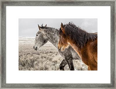 Framed Print featuring the photograph Finally Free by Yeates Photography