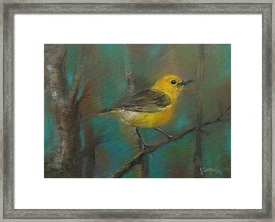 Finch Framed Print