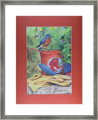 Finch Way Park Framed Print by Robert Stokes