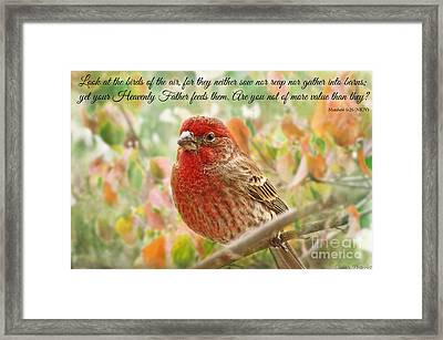 Finch With Verse New Version Framed Print by Debbie Portwood