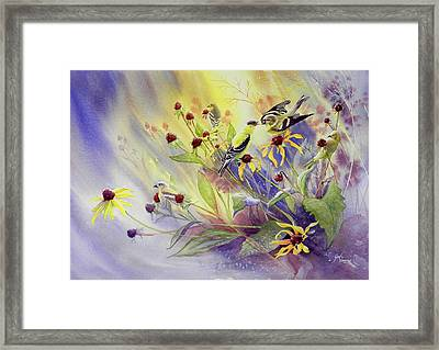 Finches To The Feast Framed Print by Gail Vass