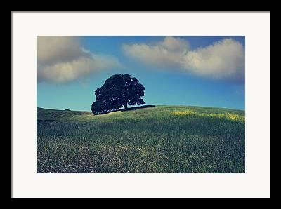 Shades State Park Framed Prints