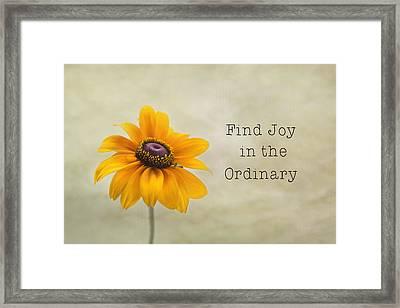 Find Joy Framed Print