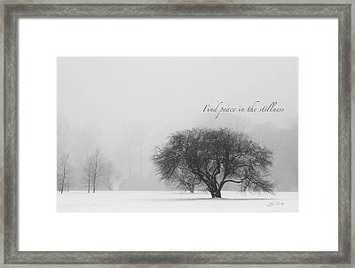 Find Peace In The Stillness Framed Print