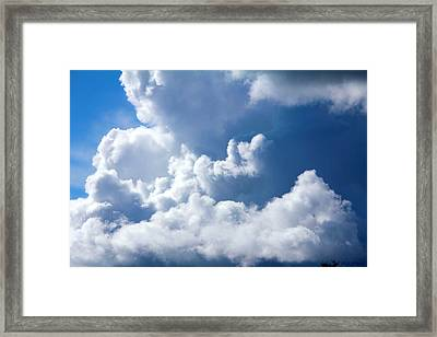 Framed Print featuring the photograph Find Teddy by Jeanette C Landstrom