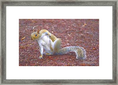 Find That Itch Framed Print by Marc Mesa