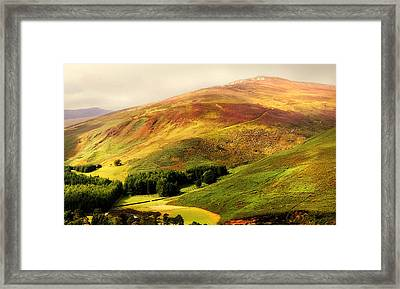 Find The Soul. Golden Hills Of Wicklow. Ireland Framed Print by Jenny Rainbow
