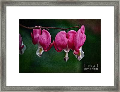 Find Your Heart Framed Print by Mary Machare