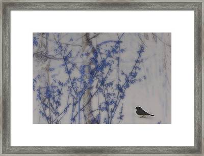 Finding His Way Framed Print by Barbara S Nickerson