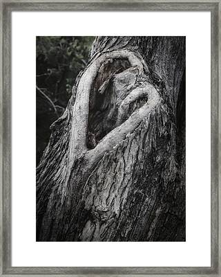 Finding Love Framed Print
