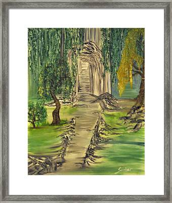 Finding Our Path Framed Print