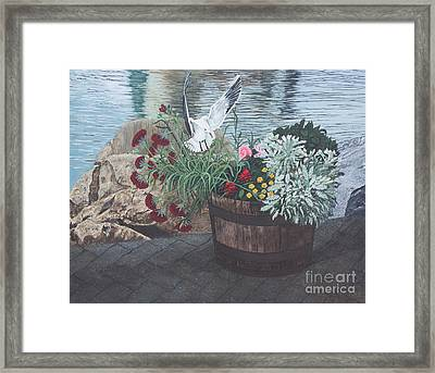 Finding Rest Framed Print