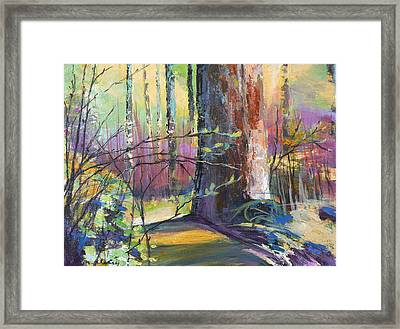 Finding The Forest Framed Print by Melody Cleary