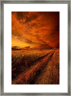 Finding The Way Home Framed Print by Phil Koch