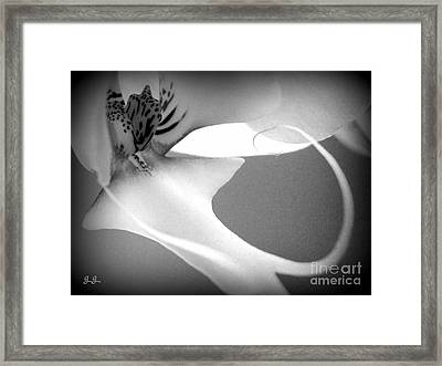 Fine Lines Black And White Framed Print
