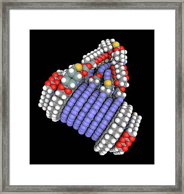 Fine-motion Molecular Controller Framed Print by Alfred Pasieka