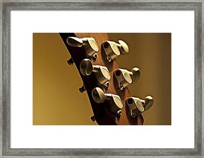 Finely Tuned Framed Print by Christopher Gaston