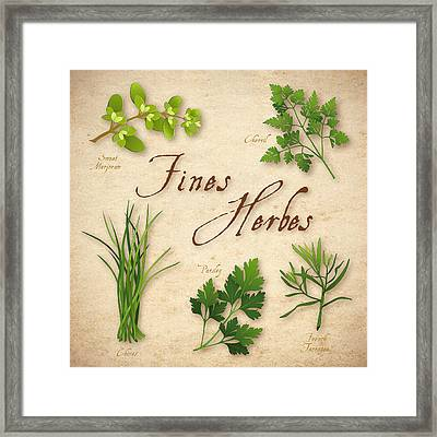 Fines Herbes - French Herb Blend Framed Print by J M Designs