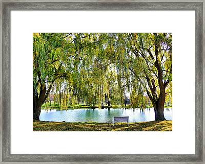 Framed Print featuring the photograph Finger Lakes Weeping Willows by Mitchell R Grosky