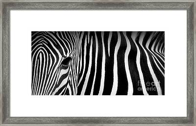 Fingerprints Framed Print
