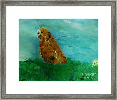 Finigan Iv Framed Print by Marie Bulger