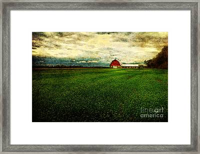 Finished Framed Print by Lois Bryan